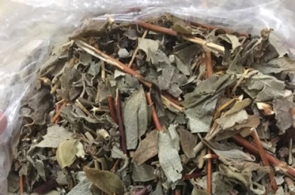 Kim ngân cuộng - Công dụng và bài thuốc than nhiệt, thải độc