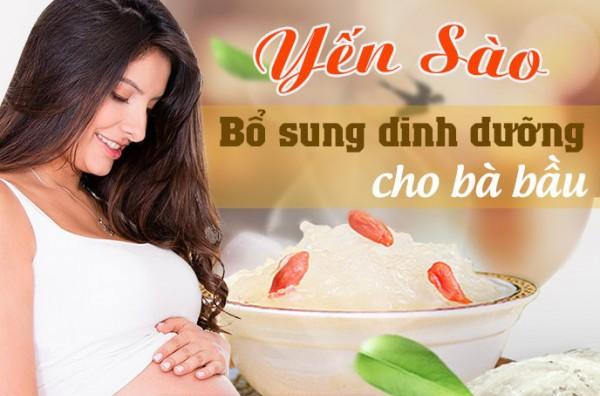 Tổ yến cho bà bầu có tốt không? Tác dụng với thai nhi