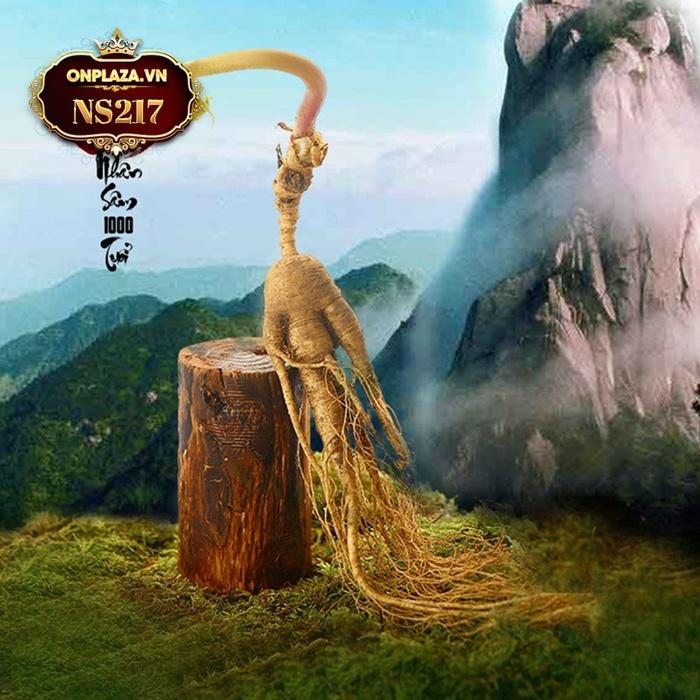 Sâm tươi núi đá Triều Tiên 1000 năm tuổi thượng hạng NS217