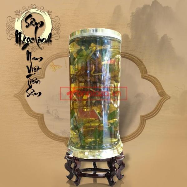 Sâm Ngọc Linh tự nhiên 150 tuổi quý hiếm loại 2,4kg/củ