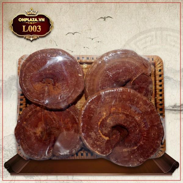 Nấm linh chi đỏ dạng khay Hàn Quốc L003