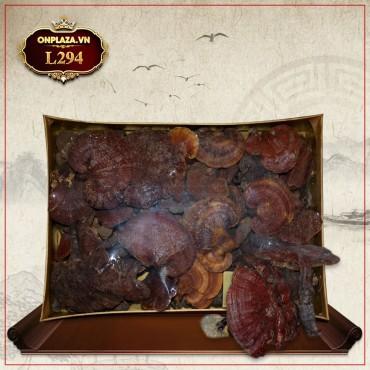 Nấm lim xanh núi Quảng Nam dòng thượng hạng hộp quà biếu 1 kg  L294
