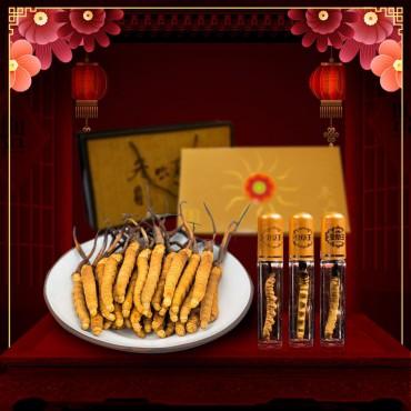 Quà tặng Đông trùng hạ thảo Tây Tạng nguyên con cao cấp D001