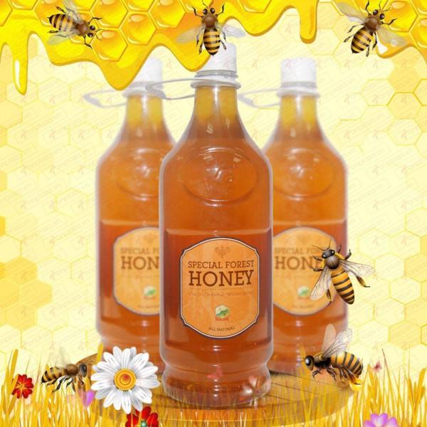 Mật ong hoa rừng đặc biệt chuyên dùng xuất khẩu 1400g (Chai nhựa) MO003