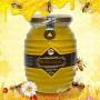 Mật ong hoa rừng bạc hà nguyên chất loại 450g (Chai thủy tinh) MO006