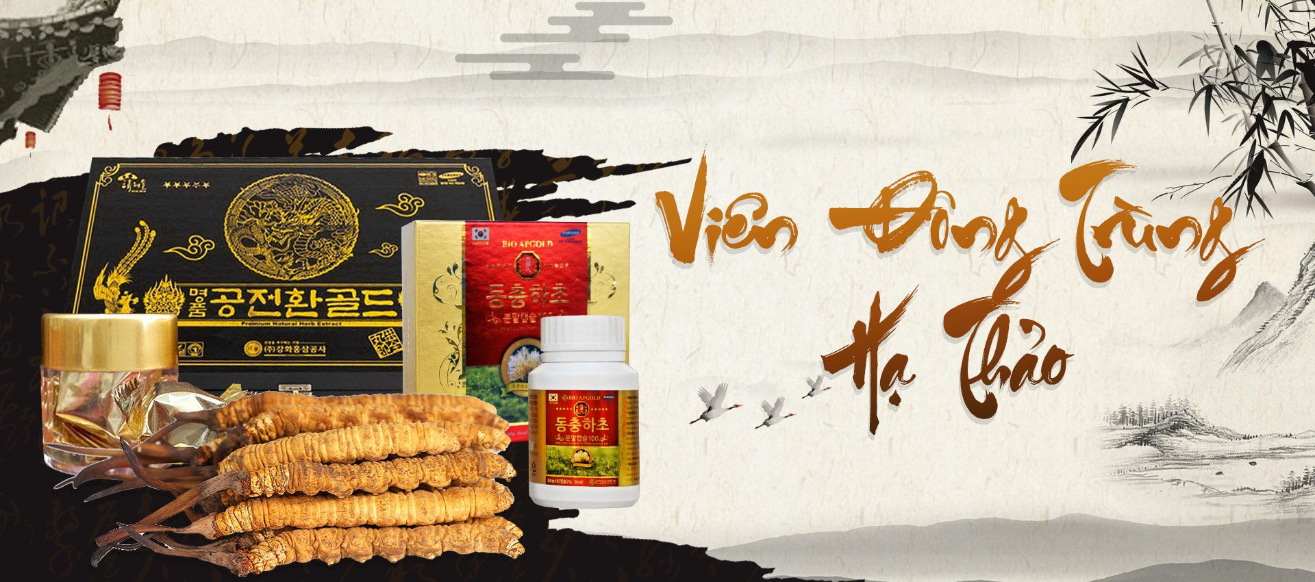 banner danh muc vien dong trung pc