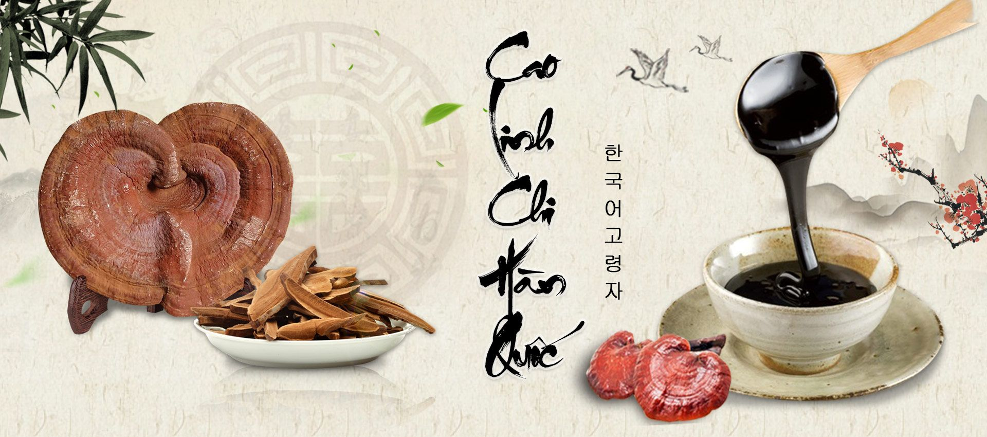 banner danh muc cao linh chi pc