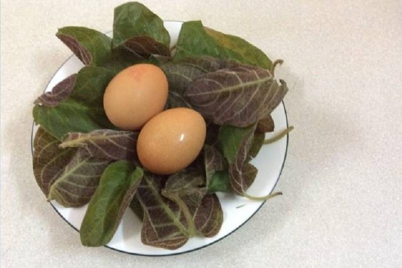 Công dụng của trứng gà lá mơ