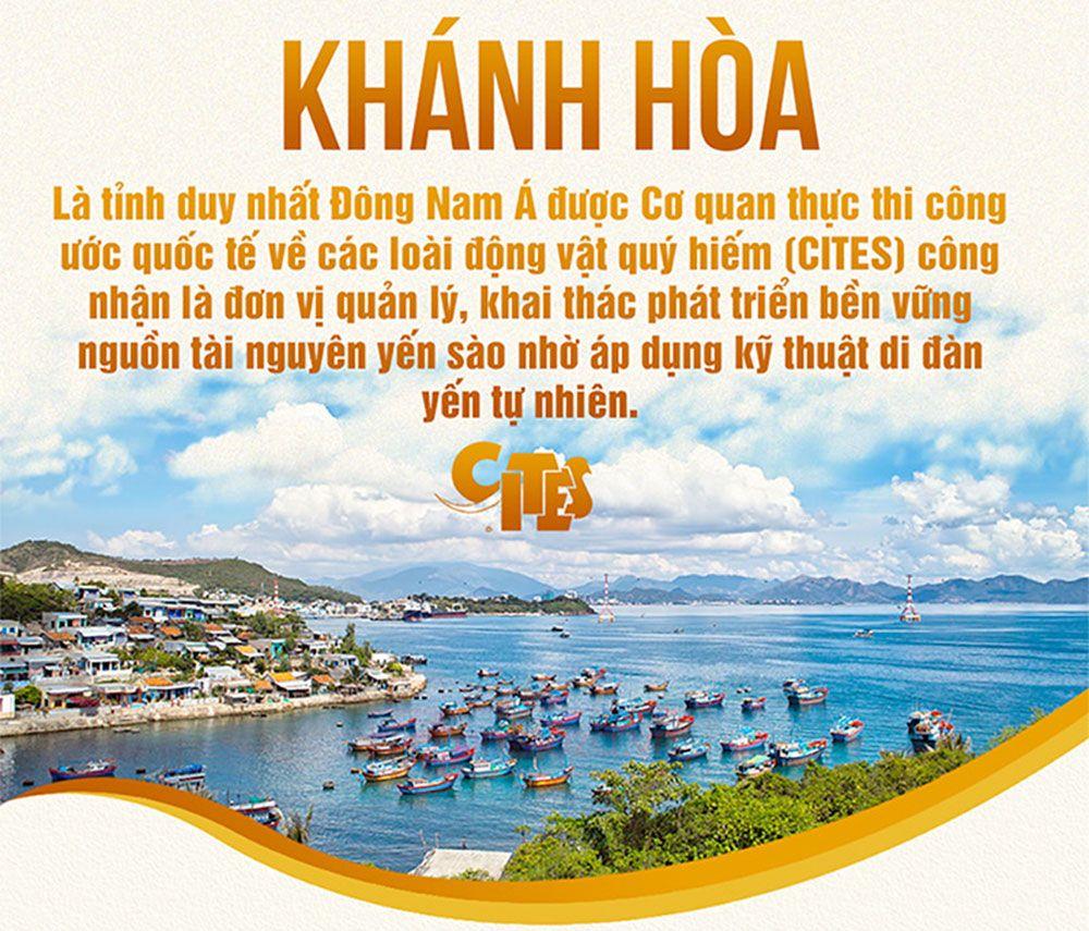 Tổ yến đảo Khánh Hòa